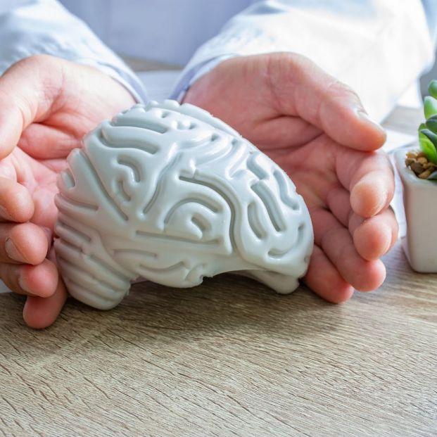 Qué es la psiconeuroinmunología y qué hace por la salud
