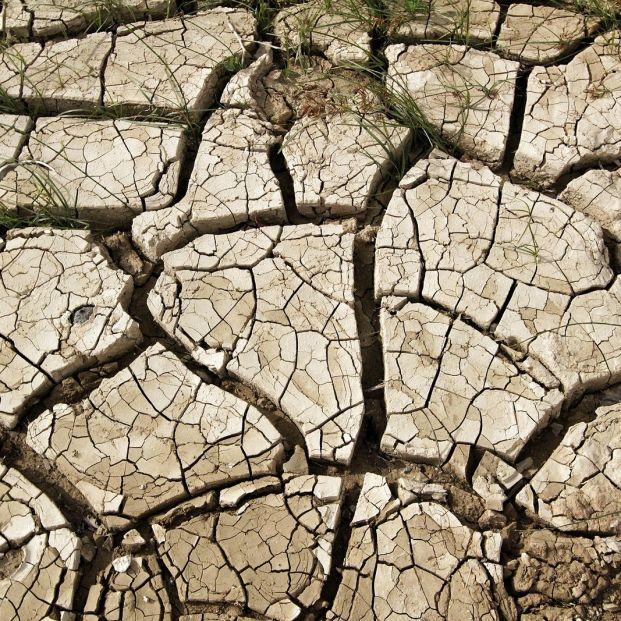 Estas serán las comunidades autónomas más perjudicadas por el cambio climático