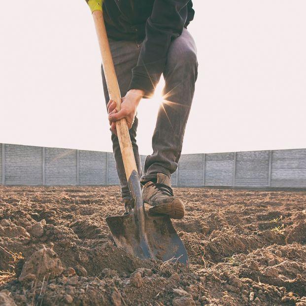 España vaciada: Los jóvenes vuelven al campo a trabajar