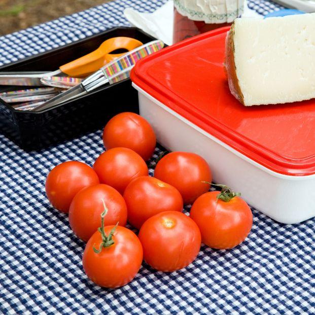 Alimentos y comida en táper