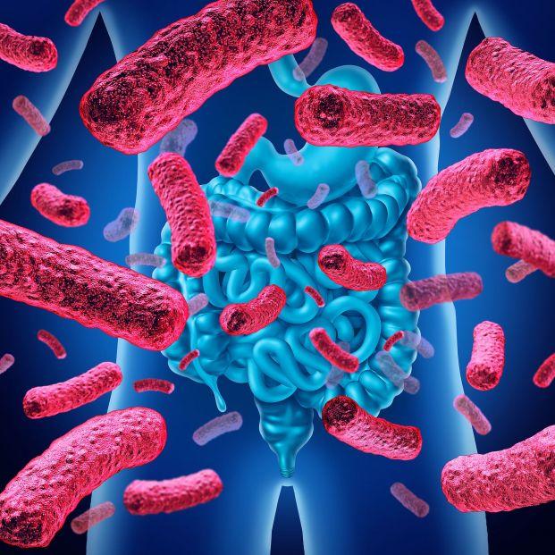Alimentos que cuidan la microbiota