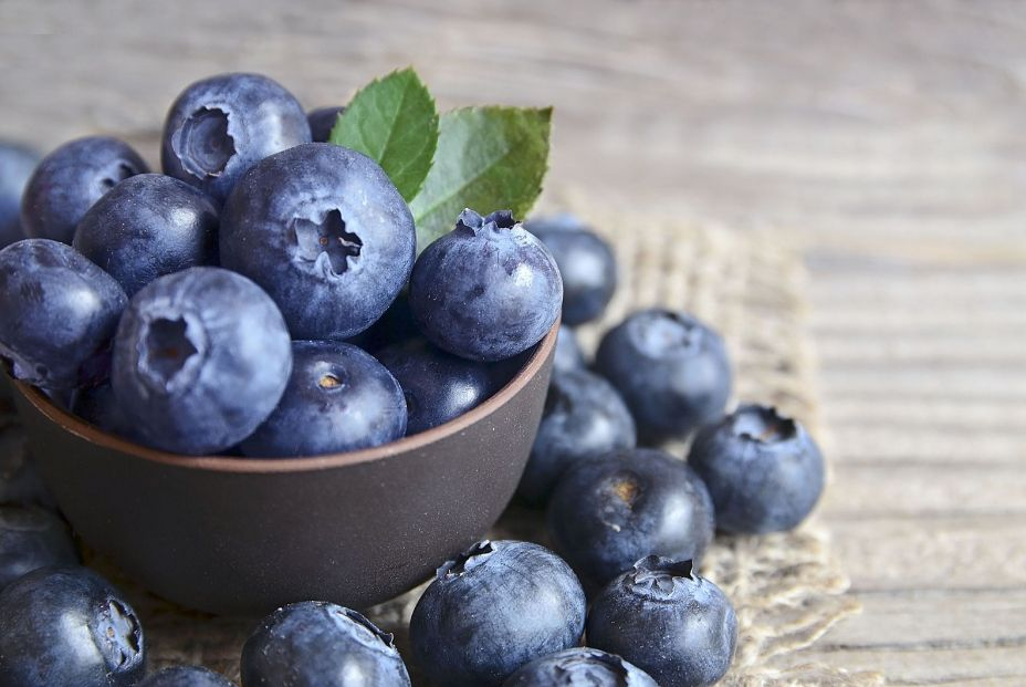 Frutas silvestres que te ayudan a mejorar la salud