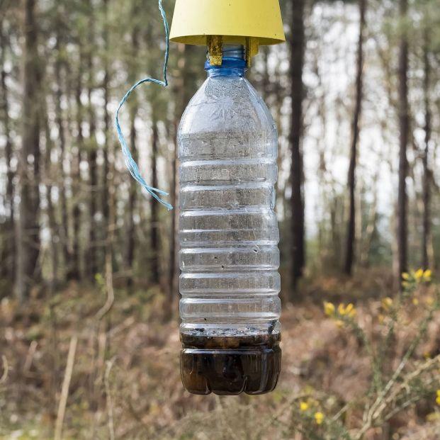 ¿Cómo evitar que entren moscas en nuestra casa?