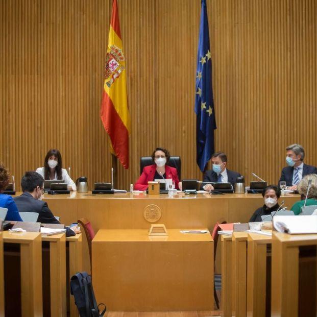 OTRO RATONCITO. (Comisión del Pacto de Toledo). Foto: Europa Press