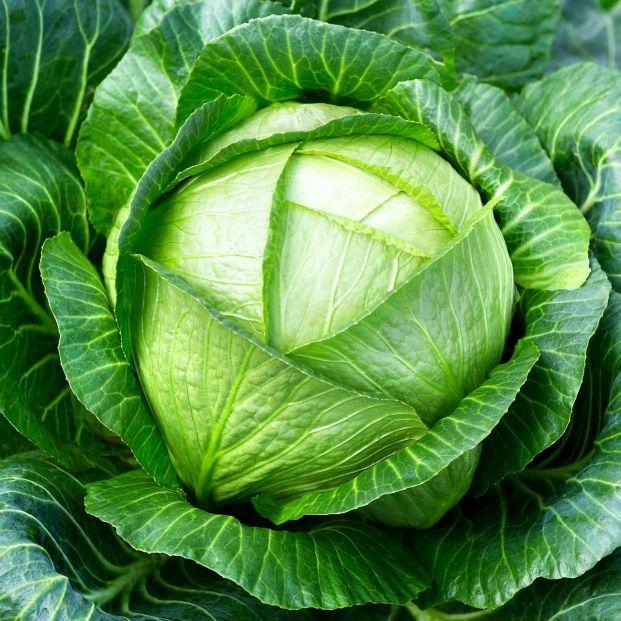 Dieta antiinflamatoria: alimentos que debes tomar y los que tienes que evitar