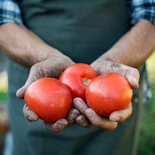 Despega el 'Amazon' de los agricultores: cómo comprar frutas y verduras a domicilio