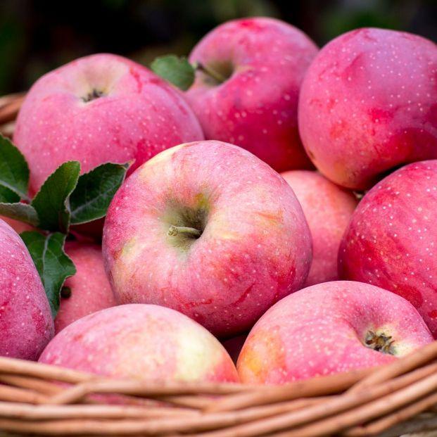 Existen más de 7.500 tipos de manzanas y algunas llevan el nombre de su 'descubridor'