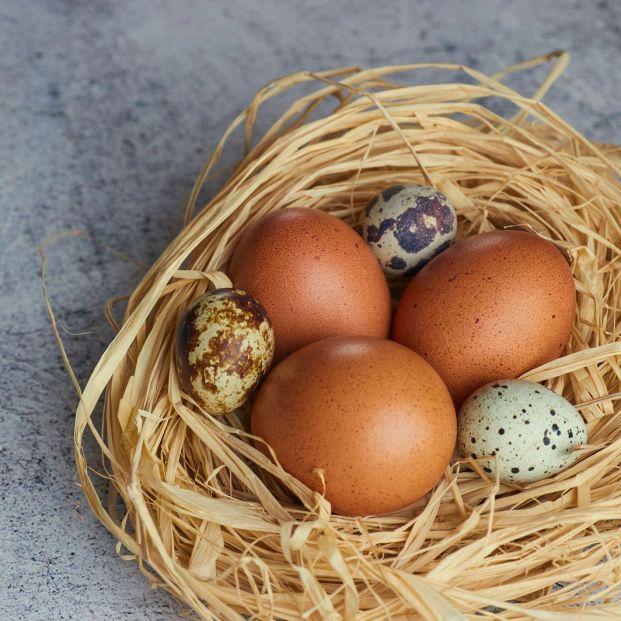 No es necesario lavar los huevos (bigstock)