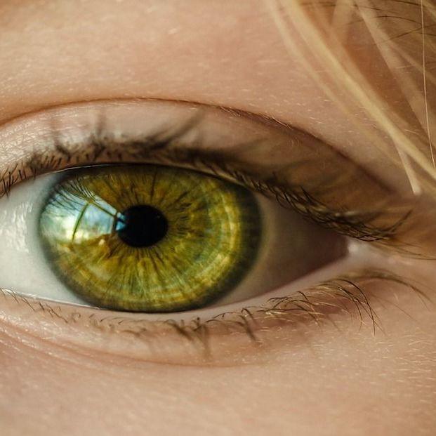 Pérdida de visión, todo lo que tienes que saber (Pixabay)