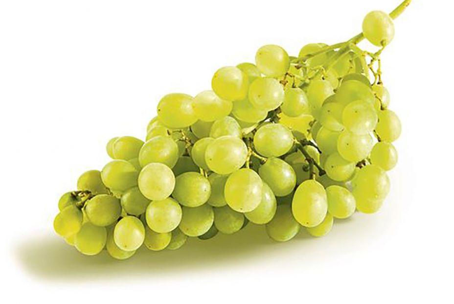 dia uvas