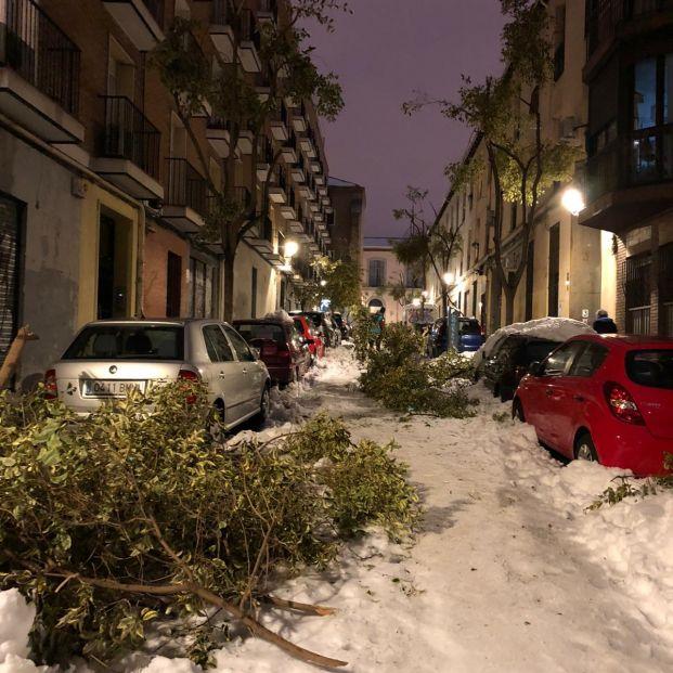 Pandemias en la nieve