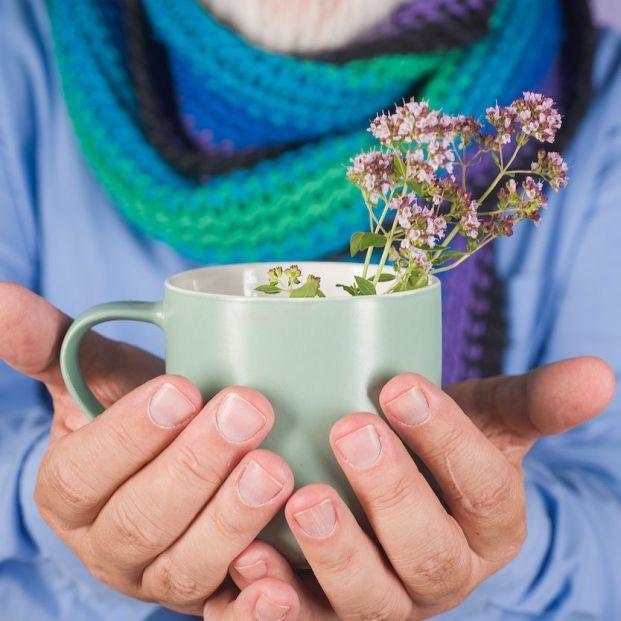 Seis remedios caseros para combatir el resfriado