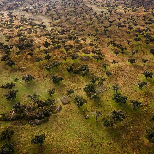 Ruta en ocho etapas por Extremadura, una tierra asombrosa