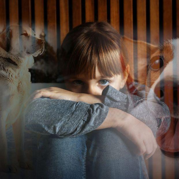 Las experiencias adversas en la infancia tienen repercusiones para toda la vida, según un estudio