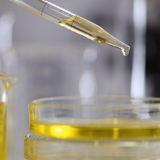 Estos 10 productos químicos son preocupantes para la salud pública, según la OMS (Foto Bigstock)
