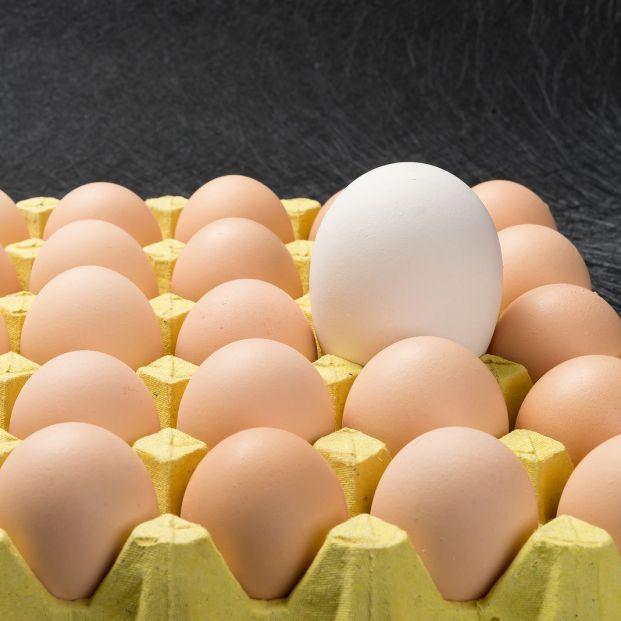 Estas ofertas de Lidl se han vuelto gigantes: tallas XXL en alimentación