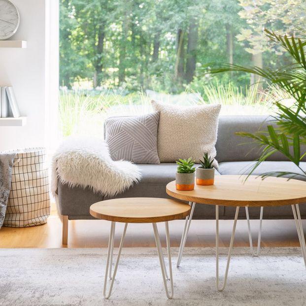 Casas llenas de naturalidad y comodidad: así es la decoración 2021 Foto: bigstock