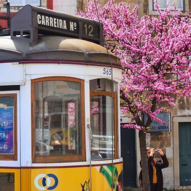 Portugal es un buen destino para viajar solo (bigstock)