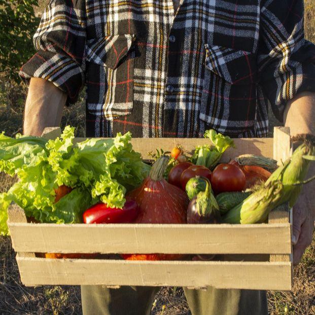 Hortalizas y vegetales con los que corres mayor riesgo de infección por Yersinia
