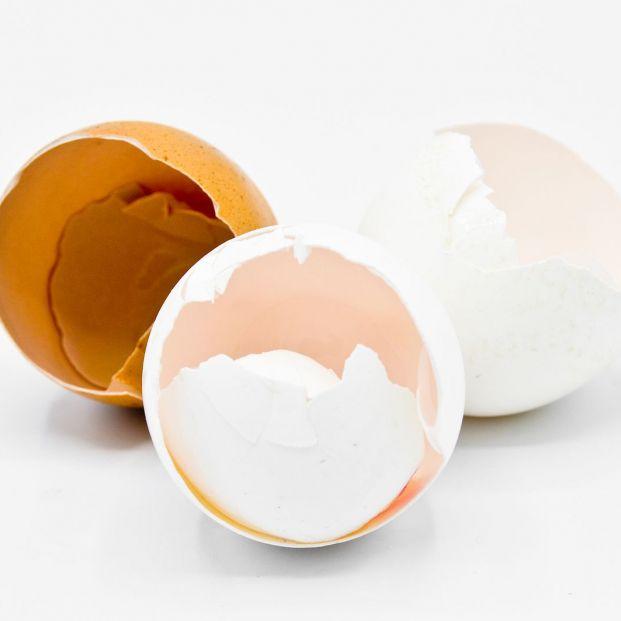 El sorprendente uso de la cáscara de huevo para las plantas