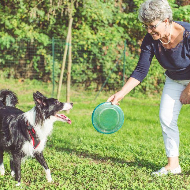 Si tienes perro, lánzale un disco volador o frisbee (bigstock)
