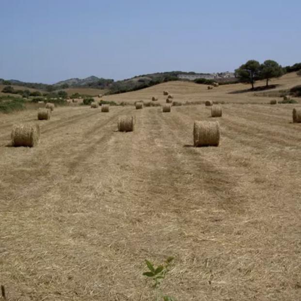 Las 10 medidas del Gobierno para la España Vaciada. Foto: Europa Press