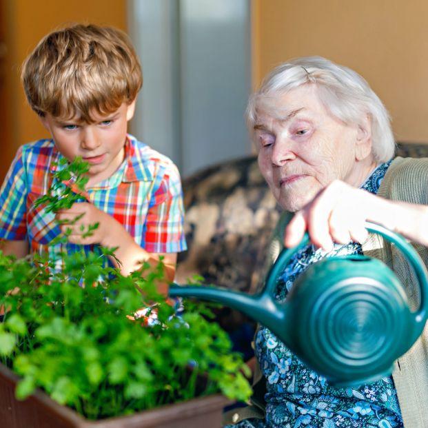 CEOMA promueve la cooperación intergeneracional en el Día Europeo de Solidaridad entre Generaciones