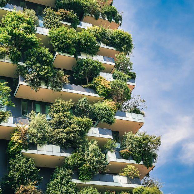 Se pueden colgar plantas en la barandilla del balcón (Foto Bigstock)