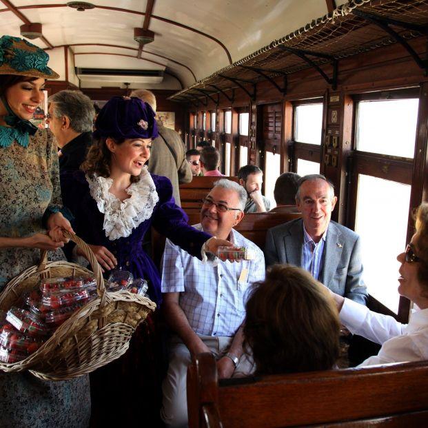 Tren de la Fresa temporada 2018 (EuropaPress remitida Gobierno Comunidad de Madrid)