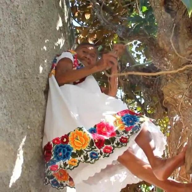 'Spideryaya', la mexicana de 88 años que trepa a los árboles para recoger y vender frutas