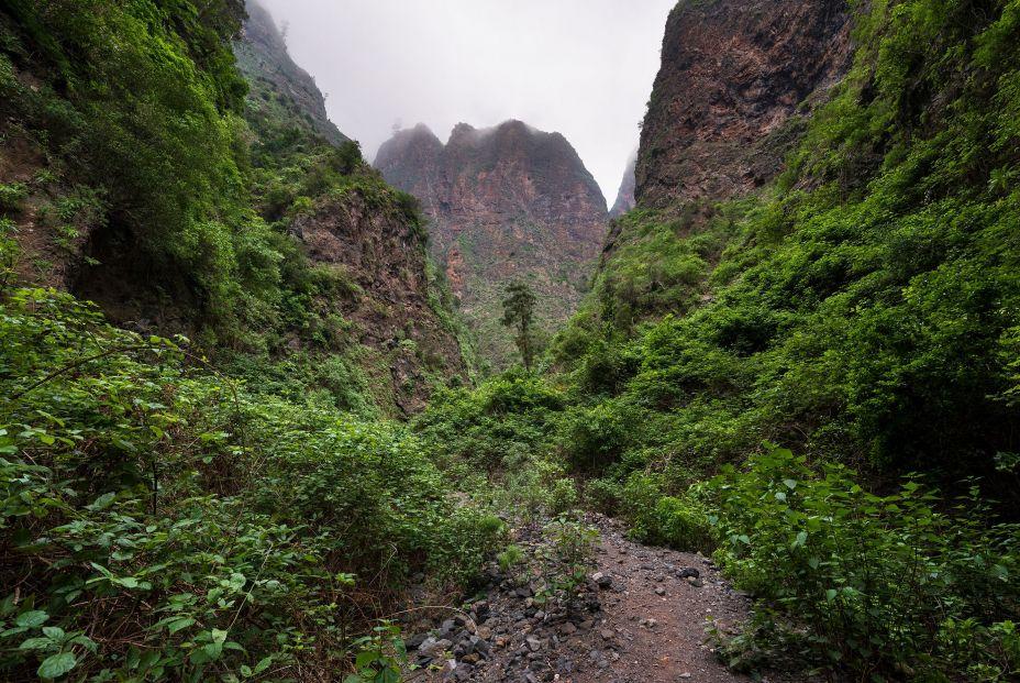 Barranco de Badajoz (Tenerife) (Foto: bigstock)