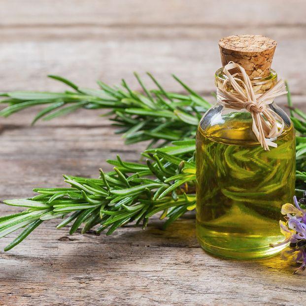 Remedios naturales para hacer crecer las cejas Foto: bigstock