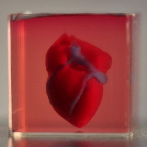 Logran imprimir en 3D el primer corazón con tejido humano