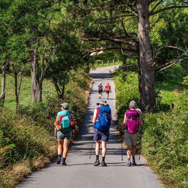 Si vas a hacer el Camino de Santiago, mejor en compañía