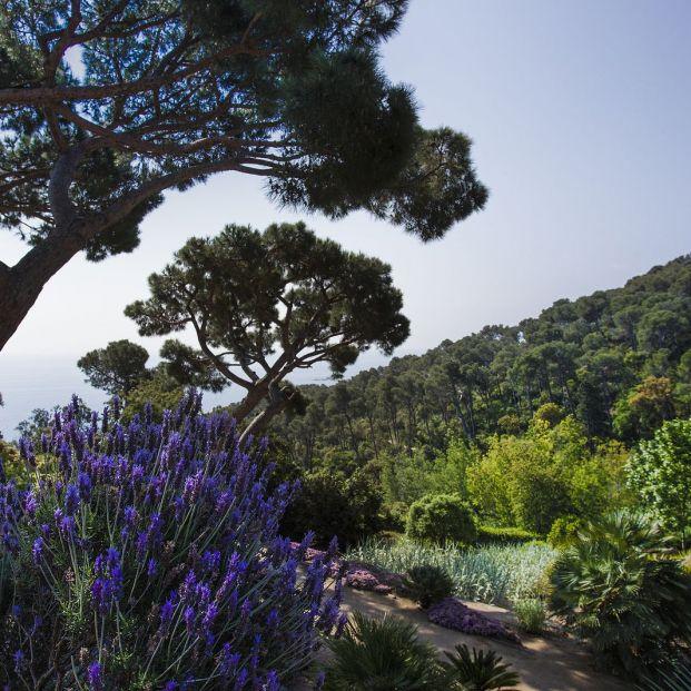 Cap Roig, la joya del Mediterráneo donde podrás ver a Raphael, Orozco, Estopa o Bisbal