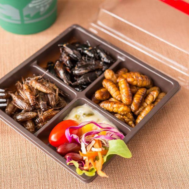 Estos son los motivos por los que deberías incluir en tu dieta los insectos