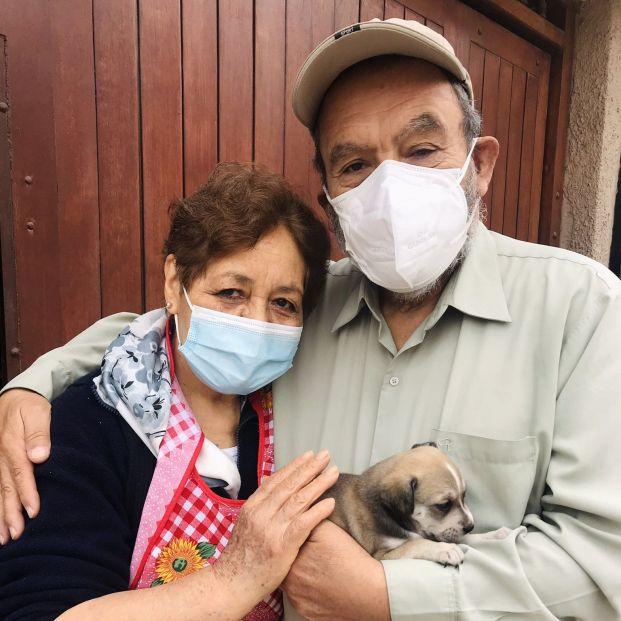 Vídeo: La emoción de un matrimonio al conseguir adoptar un cachorro tras ser rechazados por su edad