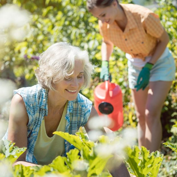 El bicarbonato de sodio, perfecto para cuidar del jardín