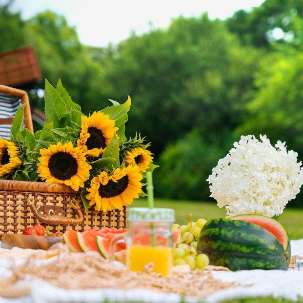 Nos vamos de picnic en primavera con estos productos de I...