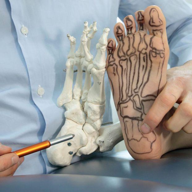 Anatomía del pie (bigstock)