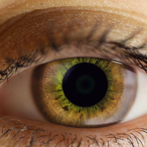 Melanoma ocular: Ojo humano (bigstock)