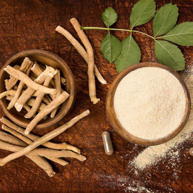 5 beneficios de la raíz de ashwagandha