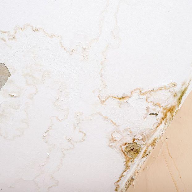 Arreglar el desconchado del techo del baño paso a paso