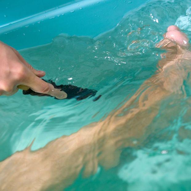 Cómo prevenir que duchas, bañeras de hidromasaje, fuentes y sistemas de riego propaguen la legionela  (Foto Bigstock)