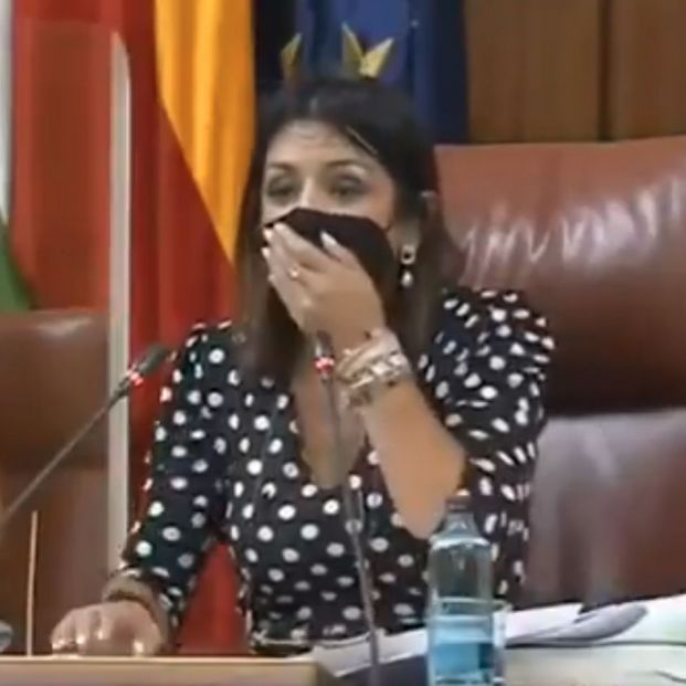 VÍDEO: Una rata se cuela en el Parlamento andaluz y desata el pánico entre los políticos