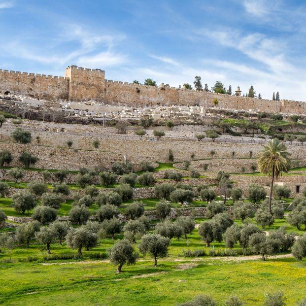Encuentran pruebas del terremoto bíblico que arrasó Jerusalén. Foto: Bigstock
