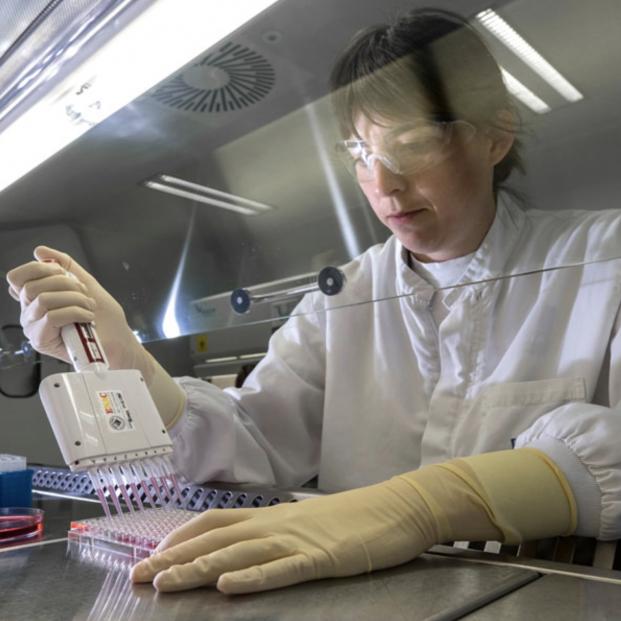 ¿Quién está detrás de la primera vacuna española?. Foto: Hipra