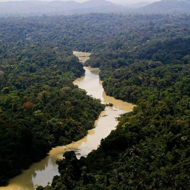Sentinel del Norte y otros lugares inexploradosm como este Vale do Javari en Brasil