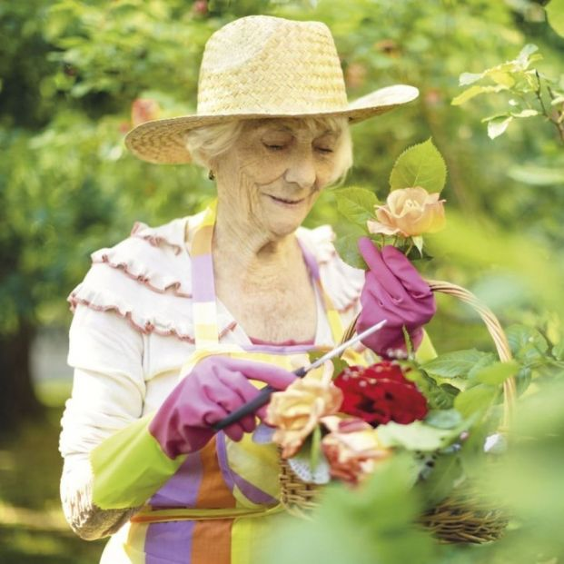 Actividades sostenibles: una forma de mejorar la calidad de vida de los mayores. Foto: Europa Press
