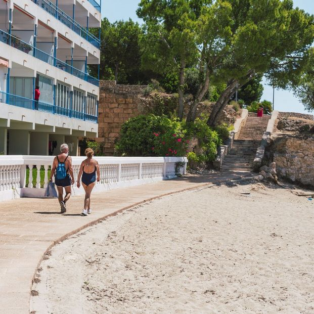 bigstock Palmanova Calvi  Mallorca  374867947